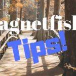 Magnetfiske tips