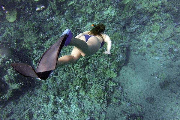 kvinna dyker Metalldetektor vattentät